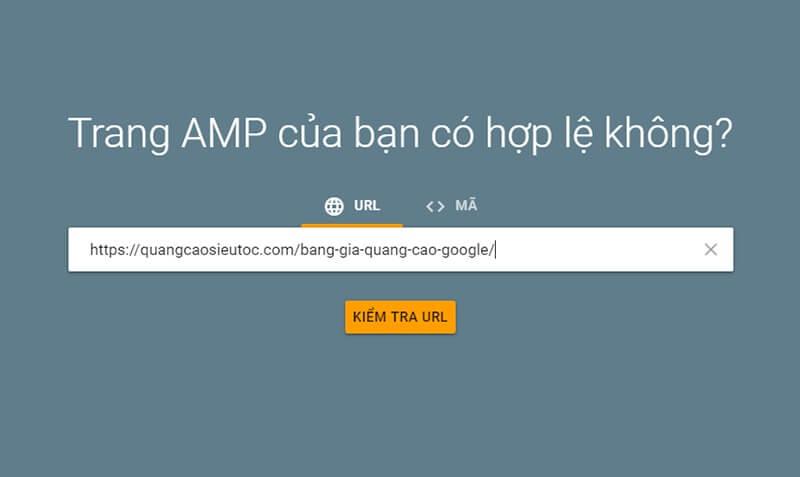 Nhập URL cần kiểm tra AMP vào công cụ của Google
