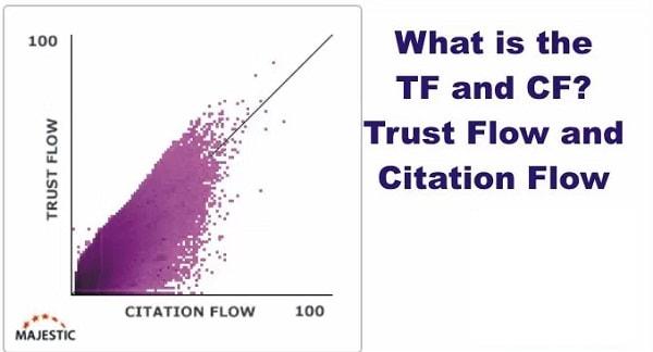 CF TF Là Gì? Seo Hiệu Quả Khi Cân Đối Tốt CF và TF