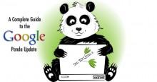 Google Panda Là Gì? Cách Thức Hoạt Động Của Google Panda Là Như Thế Nào?