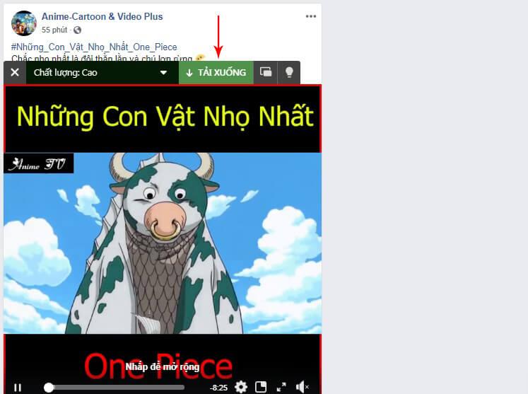 download video livestream facebook
