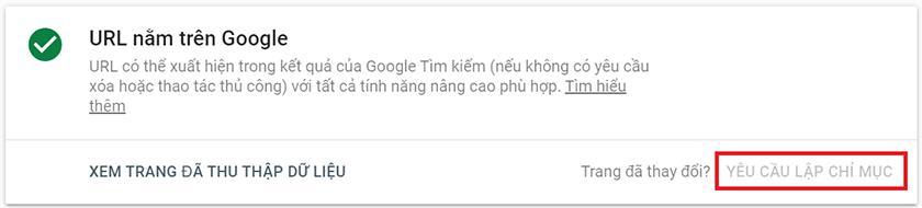 khai báo google