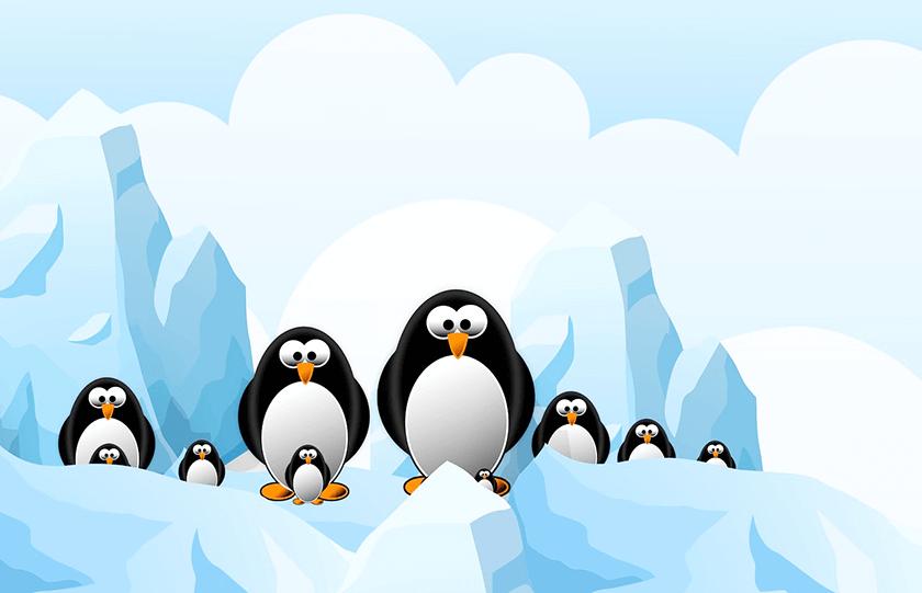 penguin google
