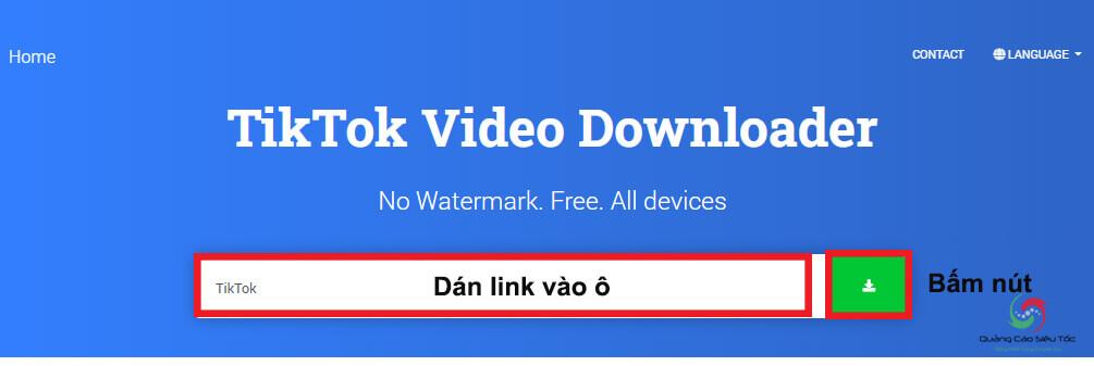 Dán link video Tiktok cần Download về máy tính