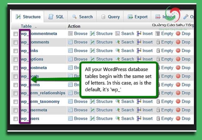 bảo mật wordpress bằng cách thay đổi tiền tố WP