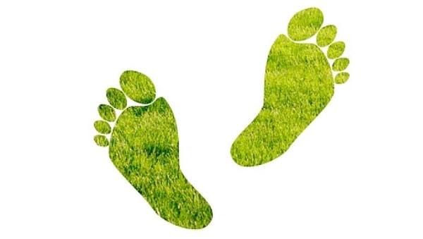 Footprint Trong Seo Là Gì