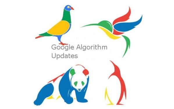 Google Hummingbird Là Gì