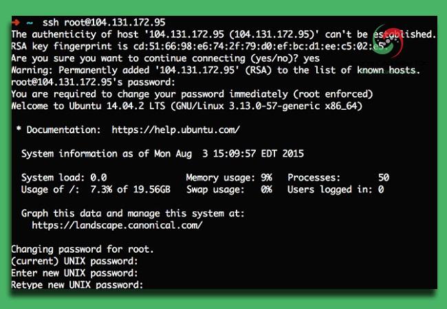 SSH là gì? Ứng dụng thực tế của SSH là gì