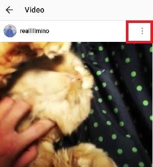 cách tải hình trên instagram