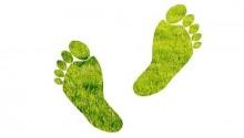 Footprint Trong Seo Là Gì? Sử Dụng Dấu Chân Google Như Thế Nào?