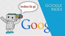 Index Google Là Gì? Hướng Dẫn Kiểm Tra Index Các Website Nhanh Nhất