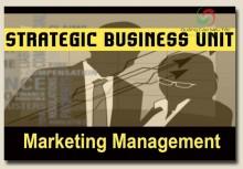 SBU là gì ? Nó có vai trò gì trong quá trình xây dựng chiến lược doanh nghiệp?