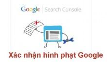 Làm Sao Để Biết Website Đã Bị Google Phạt?