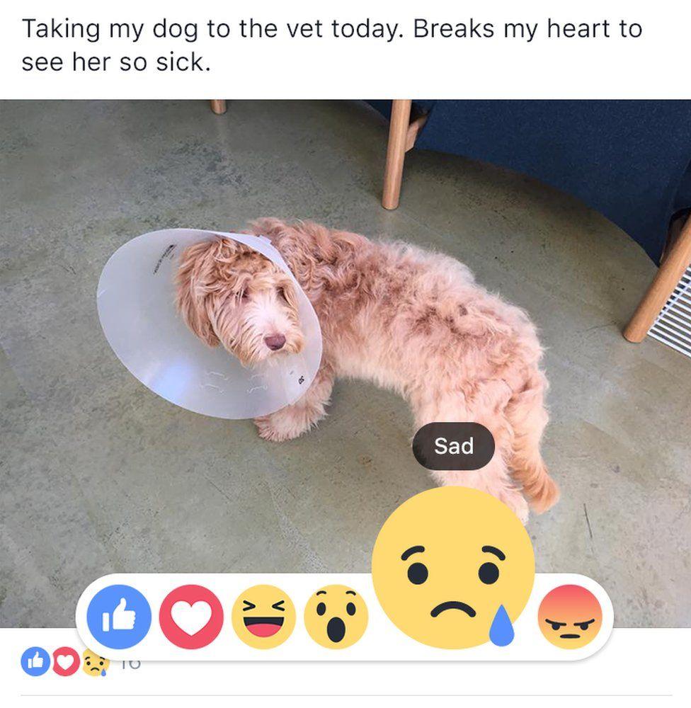 biểu tượng reaction trên Facebook
